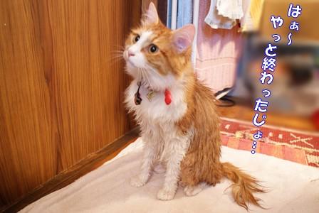 彦 お風呂2