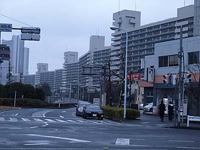 shirohige.jpg