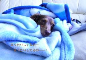 925_convert_20080823221148.jpg