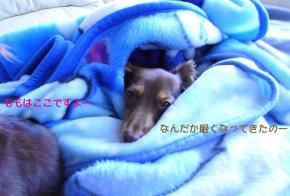 926_convert_20080823221248.jpg