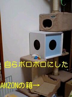 20090128014453.jpg