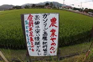 米Blog a