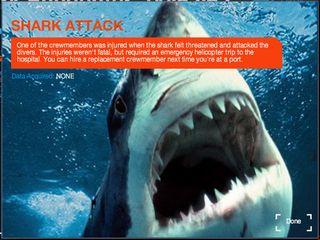 sharkrunners attacked