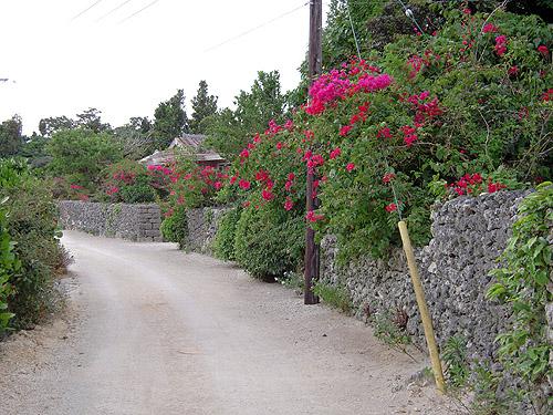 ☆竹富島⑤