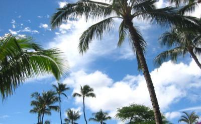 hawaii8.jpg