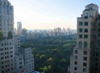 cityview8.jpg