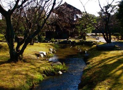 kyototour3.jpg