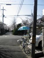 20100404-6.jpg