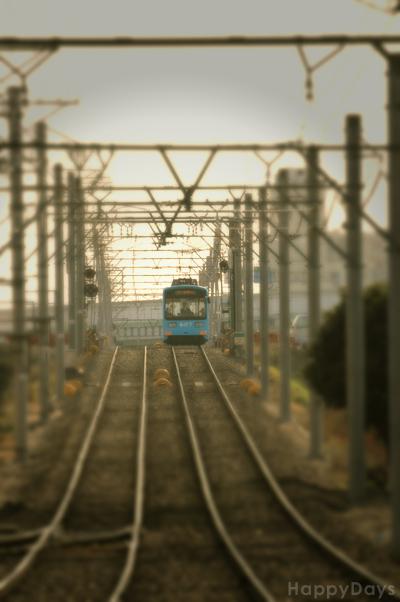 20110118-141509.jpg