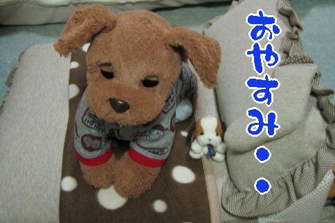IMG_9720.jpg