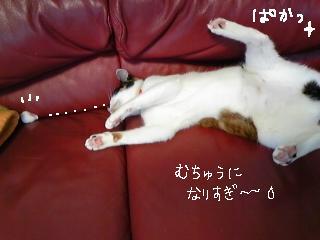 やんちゃ 5 編集