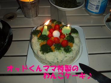 オッドくんママ特製わんこケーキ