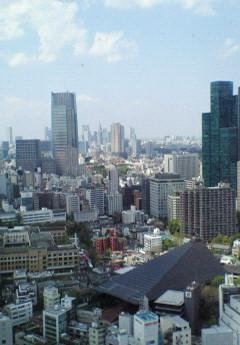 東京タワーから眺める都庁
