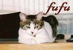 fufu2