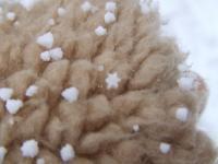 北海道~雪の結晶