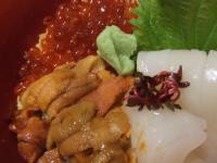 北海道~いか・うに・いくら 三色丼