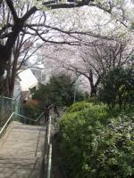 代官山 西郷山公園