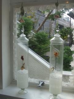 装苑70th anniversary weeks in Laforet HARAJUKU 『TOKYO FANTASY』