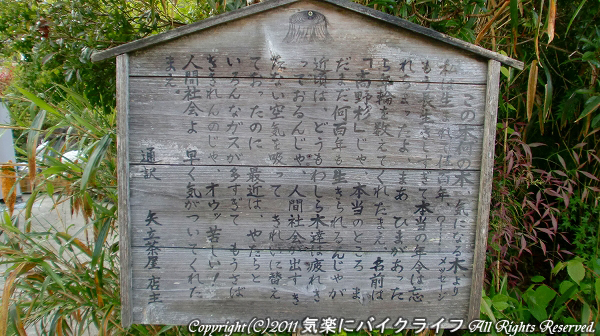 koyasan_haikai