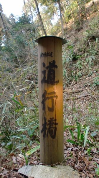 mezurashi110330