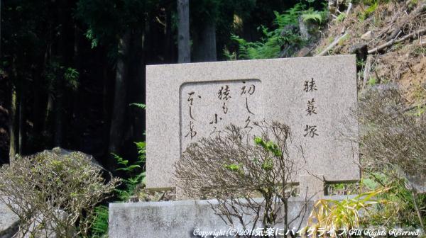nagano_pass