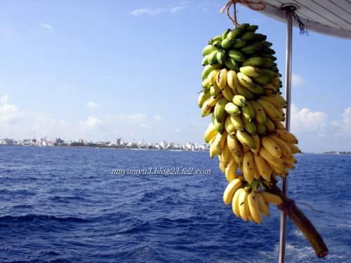 マーレの街と船最後尾のバナナ