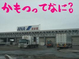 初貨物ターミナル