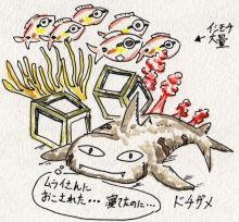 サメ_起こされたドチザメ