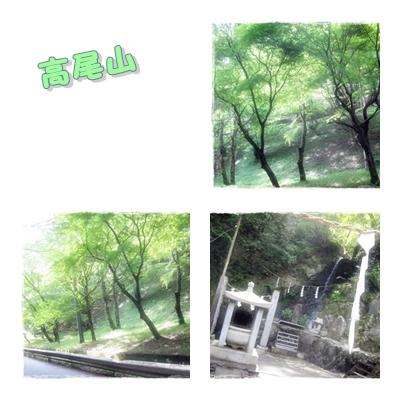 090503Takao002.jpg