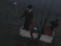 05101515海苔つくりは大変な仕事