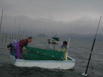 05101533おいしい海苔を作る