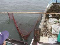 05101546おいしい海苔のために清掃中です