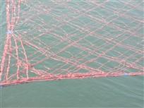 なんとなく海苔網の数が減ってますね~