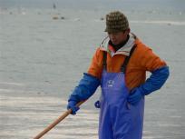 美味しい熊本海苔をお願いしま~す♪