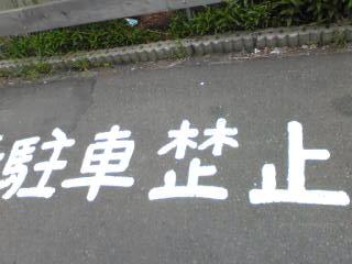 kinshiImage582.jpg