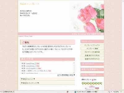 s10-novel-template-pink2.jpg