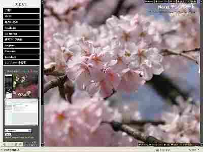s102-novel-PF-Sakura.jpg