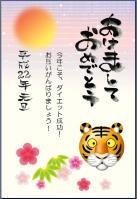 nengamihon2009.jpg