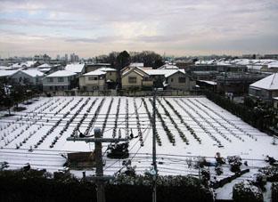 10.2.2雪景色八雲