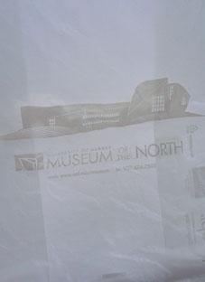 20102末アラスカ5