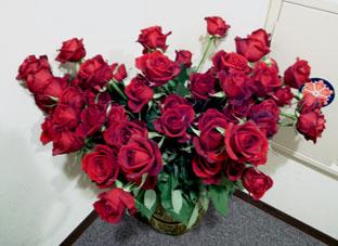 2月2日63本薔薇