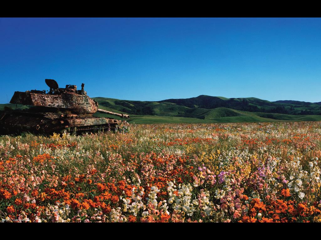 戦車と花畑