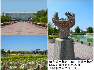 815-5.jpg