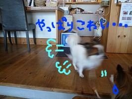 cafeにて②