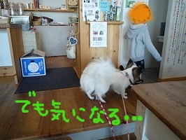 cafeにて③