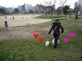 扇町公園①