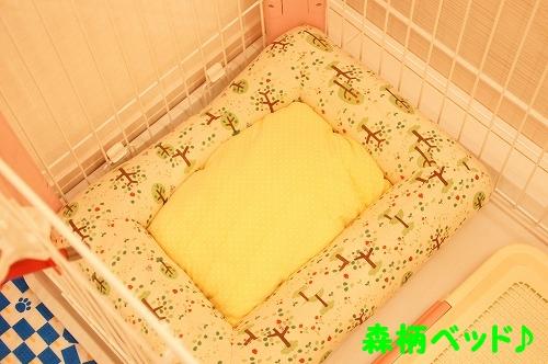 サークル用ベッド①