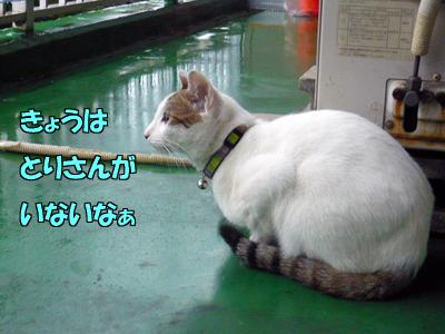 0131-07.jpg