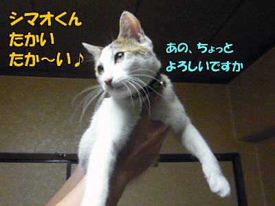 090320-07.jpg