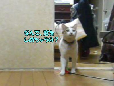 090324-03.jpg